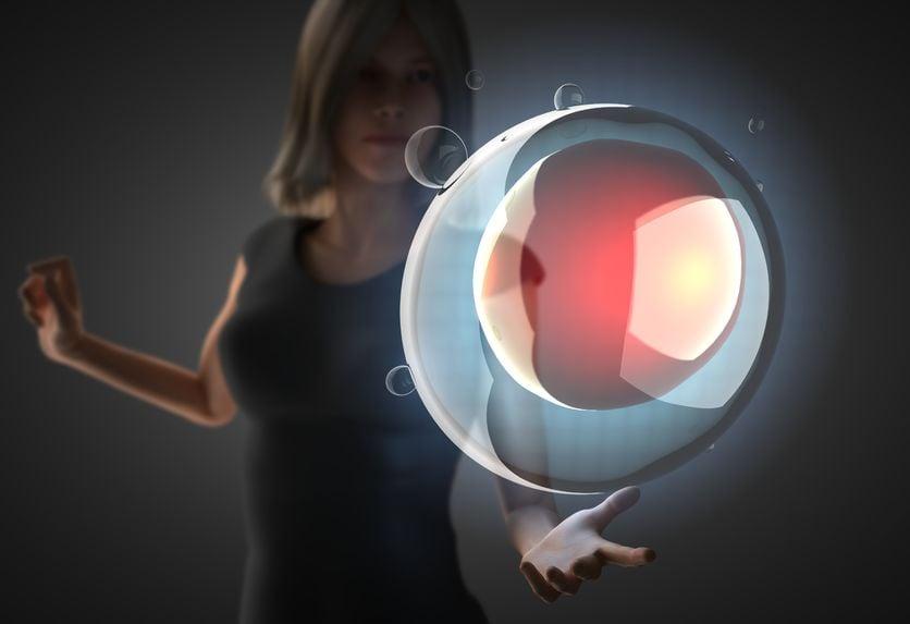 ReUnite Rx human preimplantation embryo development