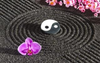 ReUnite Rx Acupuncture Massage Yoga Frozen Embryo Transfer